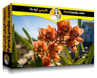 لیندا _ آموزش عکاسی پیشرفته: دوربین های دیجیتال Medium-Format (با زیرنویس)